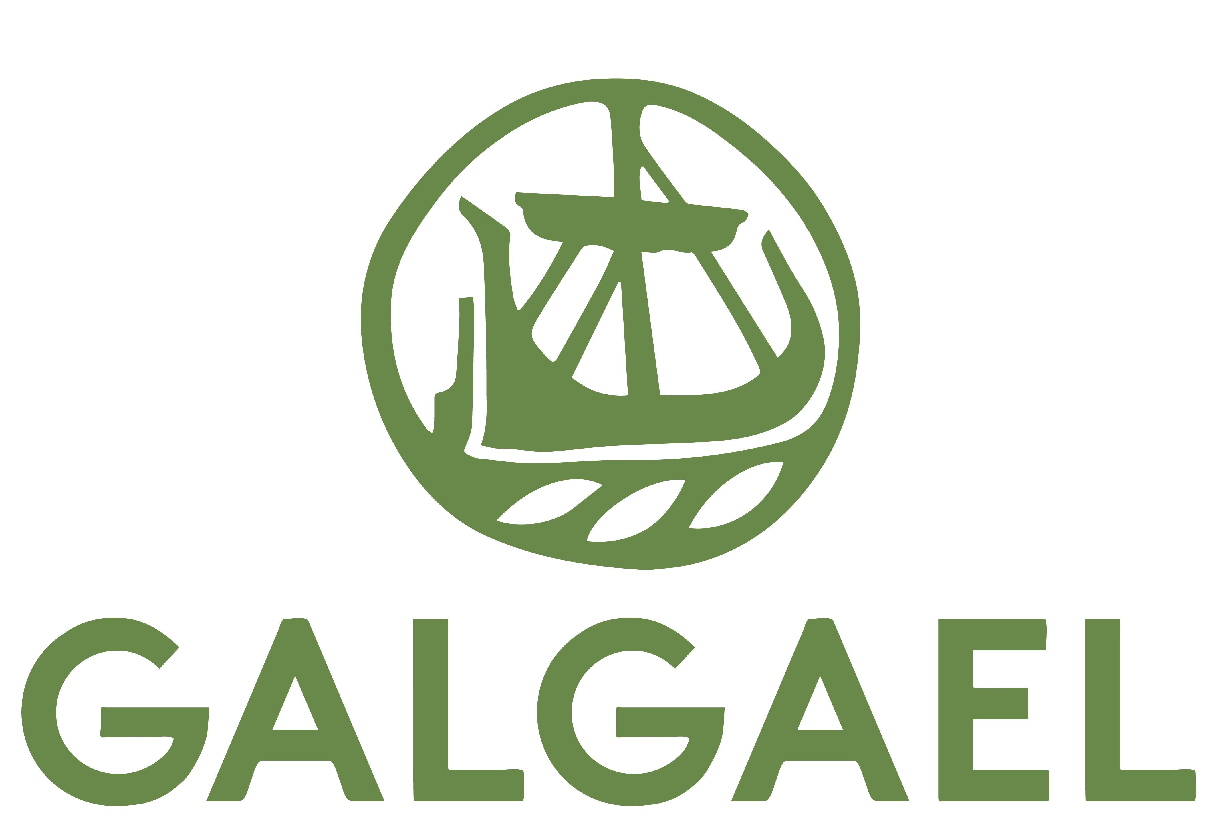 GalGael